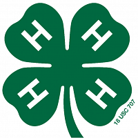 4-H Survival & Sustainable Living