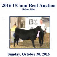 UConn Beef Auction