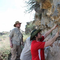 Molecular Plant Remains at Archaeological Sites