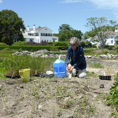 UConn Advanced Master Gardeners- Coastal Certificate