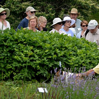 UConn Advanced Master Gardeners- Gardening for the Ages
