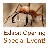 Be Our Guest: Exhibit Opening Event!