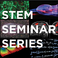 STEM Seminar Series - The Value of Virtual Research Experiences: A Conversation with UConn Undergrads